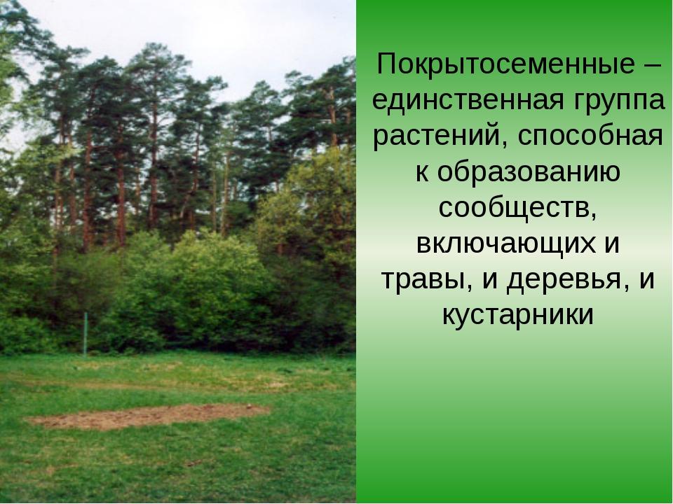 Покрытосеменные – единственная группа растений, способная к образованию сообщ...