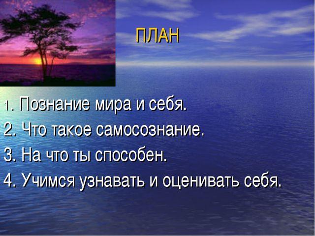 ПЛАН 1. Познание мира и себя. 2. Что такое самосознание. 3. На что ты способе...