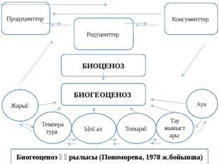 Биогеоценоз құрылысы (Пономорева, 1978 ж.бойынша) Жарық Температура Топырақ Т