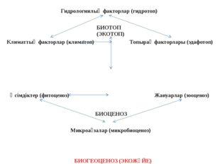 Гидрологиялық факторлар (гидротоп) Климаттық факторлар (климатоп) Топырақ фак