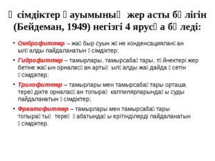 Өсімдіктер қауымының жер асты бөлігін (Бейдеман, 1949) негізгі 4 ярусқа бөлед