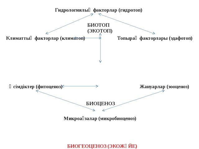 Гидрологиялық факторлар (гидротоп) Климаттық факторлар (климатоп) Топырақ фак...