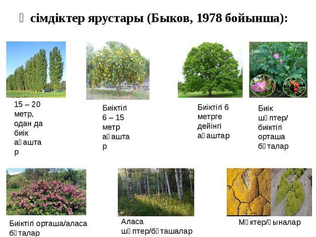 Өсімдіктер ярустары (Быков, 1978 бойынша): 15 – 20 метр, одан да биік ағаштар...