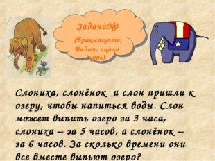Задача№3 (Брахмагупта, Индия, около 600г) Слониха, слонёнок и слон пришли к