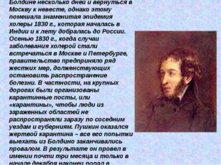 Пушкин рассчитывал провести в Болдине несколько дней и вернуться в Москву к н