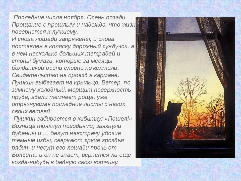 Последние числа ноября. Осень позади. Прощание с прошлым и надежда, что жизн...