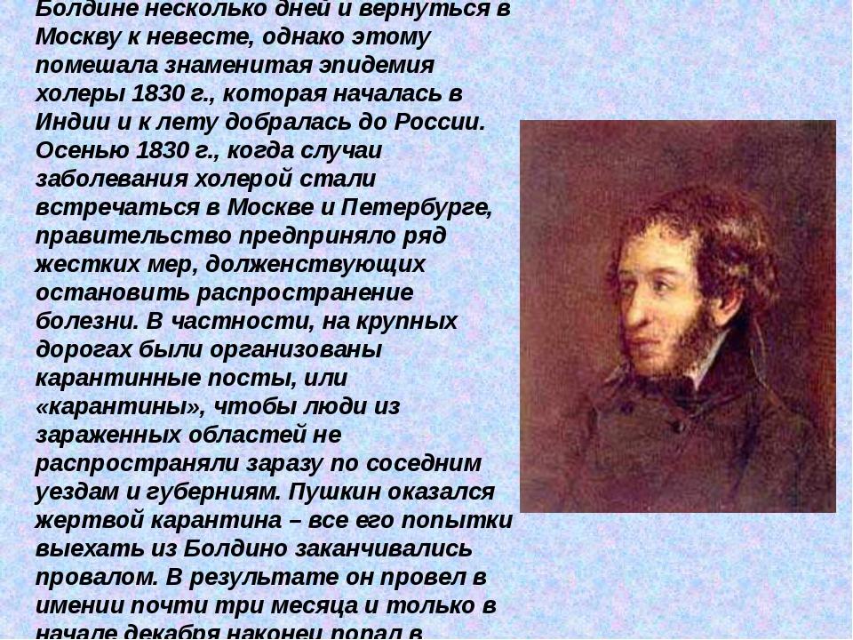 Пушкин рассчитывал провести в Болдине несколько дней и вернуться в Москву к н...