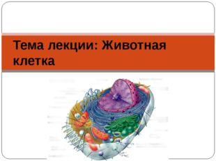 Тема лекции: Животная клетка