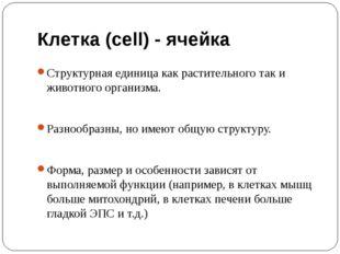 Клетка (cell) - ячейка Структурная единица как растительного так и животного
