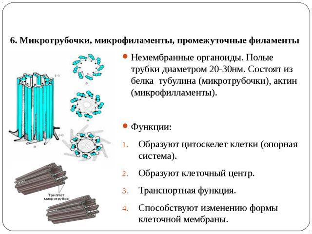 6. Микротрубочки, микрофиламенты, промежуточные филаменты Немембранные органо...