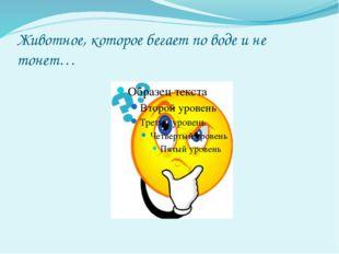 Морская игуана «Василиск»