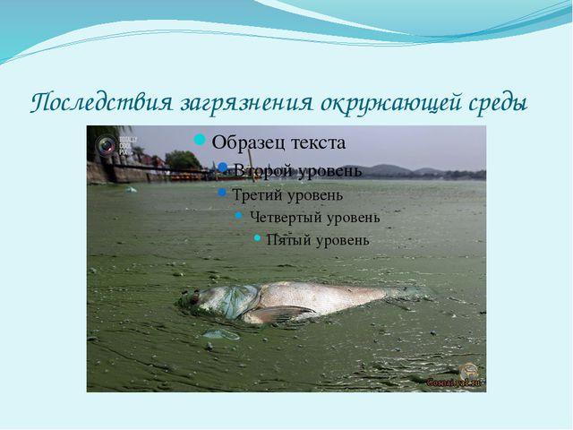 Из-за загрязнения воды погибают растения и животные водного мира