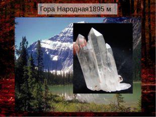 Гора Народная1895 м