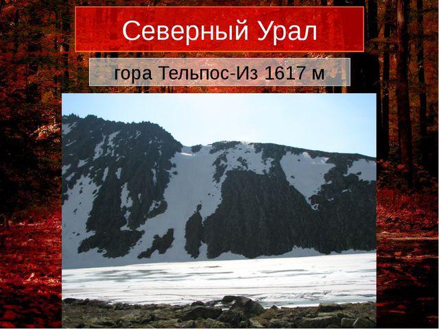Северный Урал гора Тельпос-Из 1617 м