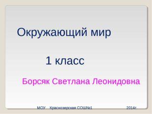 Окружающий мир 1 класс Борсяк Светлана Леонидовна МОУ Краснозерская СОШ№1 201