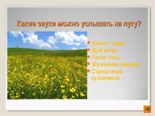 Какие звуки можно услышать на лугу? Шелест травы Шум ветра Пение птиц Жужжани