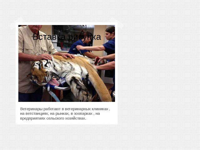 Ветеринары работают в ветеринарных клиниках , на ветстанциях, на рынках, в з...