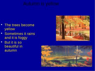 The trees become yellow Sometimes it rains and it is foggy But it is so beau