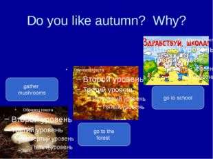 Do you like autumn? Why? gather mushrooms go to the forest go to school
