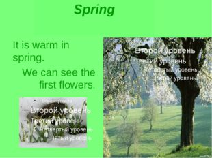It is warm in spring. We can see the first flowers. Spring