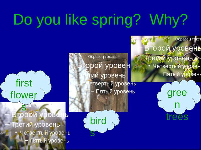 Do you like spring? Why? first flowers birds green trees