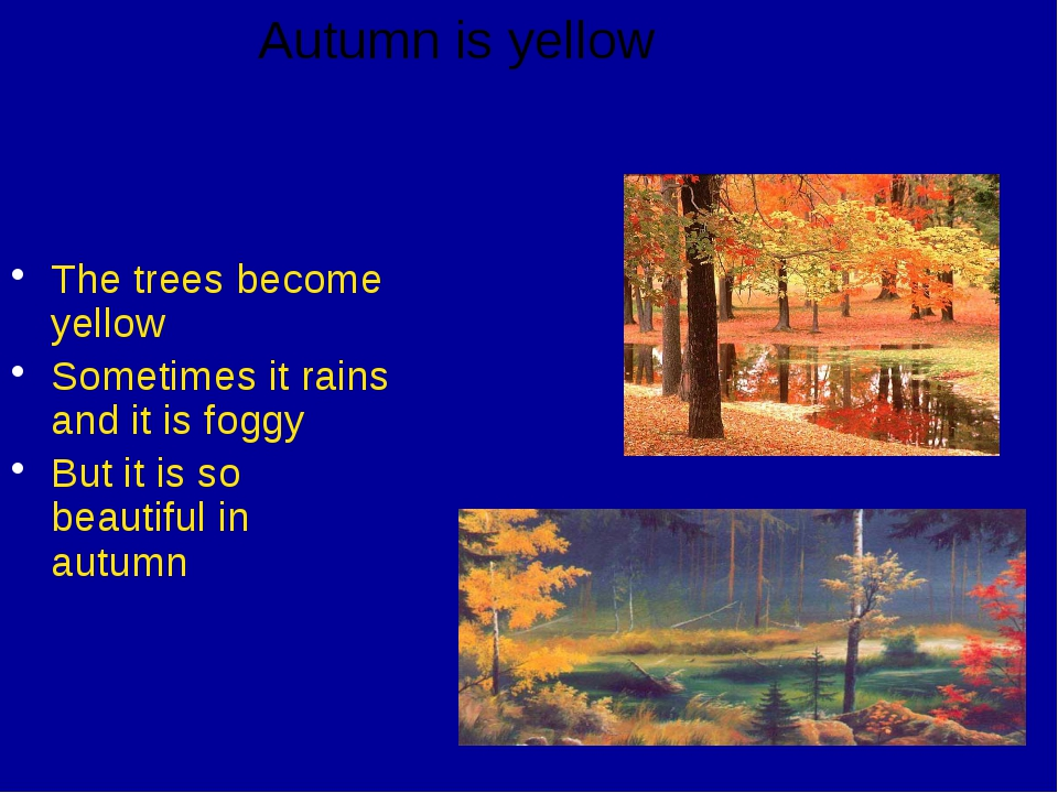 The trees become yellow Sometimes it rains and it is foggy But it is so beau...
