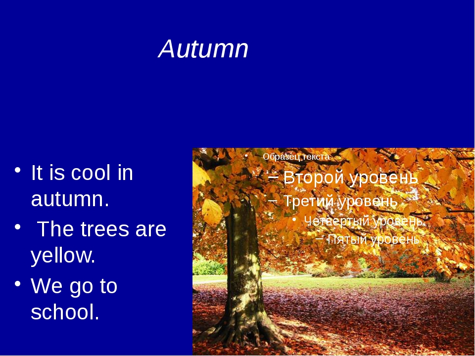 It is cool in autumn. The trees are yellow. We go to school. Autumn