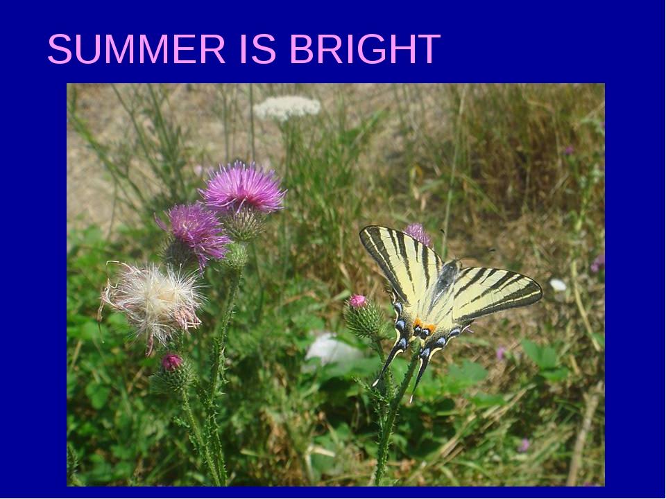 SUMMER IS BRIGHT