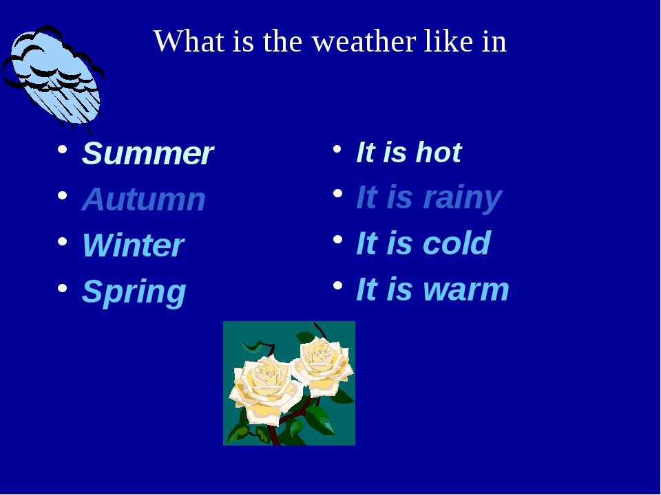 Summer Autumn Winter Spring It is hot It is rainy It is cold It is warm What...
