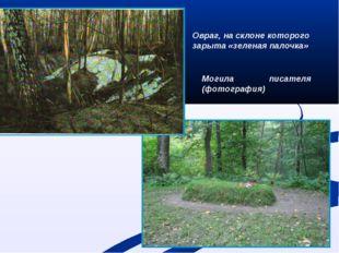 Могила писателя (фотография) Овраг, на склоне которого зарыта «зеленая палочка»
