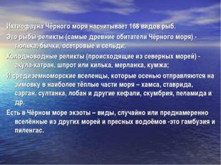 Ихтиофауна Чёрного моря насчитывает 168 видов рыб. Это рыбы-реликты (самые др