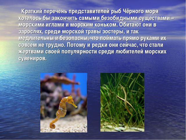 Краткий перечень представителей рыб Чёрного моря хотелось бы закончить самым...