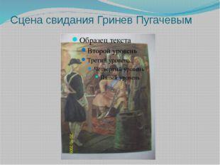 Сцена свидания Гринев Пугачевым