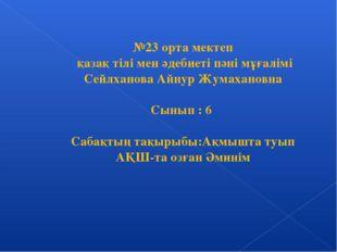 №23 орта мектеп қазақ тілі мен әдебиеті пәні мұғалімі Сейлханова Айнур Жумаха