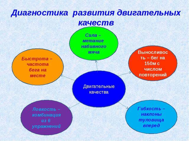 Диагностика развития двигательных качеств Двигательные качества Сила – метан...
