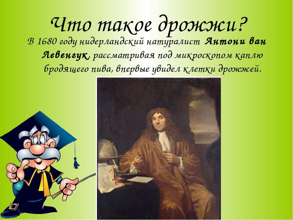 Что такое дрожжи? В 1680 году нидерландский натуралист Антони ван Левенгук, р...