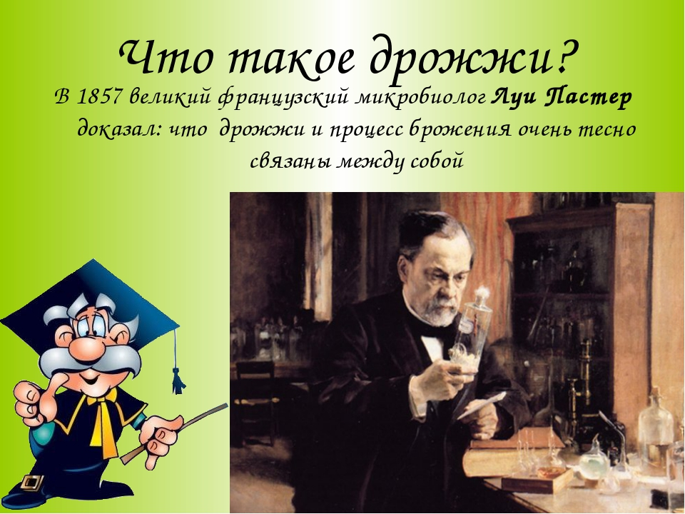 Что такое дрожжи? В 1857 великий французский микробиолог Луи Пастер доказал:...