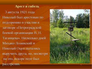Арест и гибель 3 августа 1921 года Николай был арестован по подозрению в учас