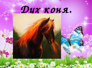Дух коня.