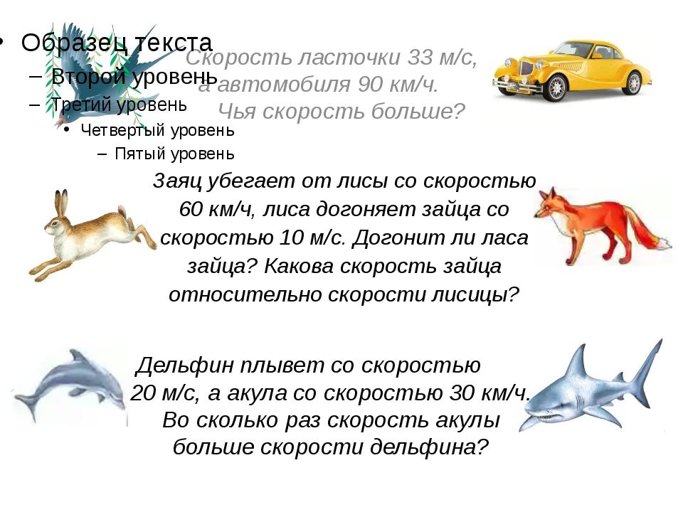 Скорость ласточки 33 м/с, а автомобиля 90 км/ч. Чья скорость больше? Заяц убе...
