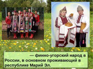 Мари́йцы ― финно-угорский народ в России, в основном проживающий в республике
