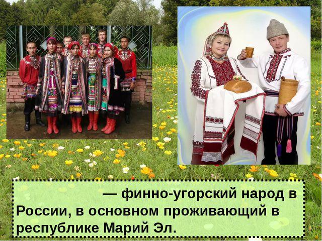 Мари́йцы ― финно-угорский народ в России, в основном проживающий в республике...
