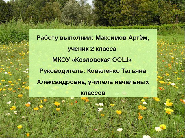 Работу выполнил: Максимов Артём, ученик 2 класса МКОУ «Козловская ООШ» Руково...