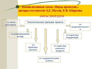 Компилятивная схема «Виды проектов», авторы-состаители А,Г, Мутли, Е.В. Шарк