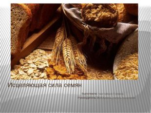 Исцеляющая сила семян Выполнила: таня Чайка10 б класса. Руководитель: И.А.Бун