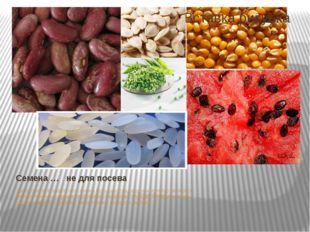 Семена … не для посева Далеко не все знают, что семена большинства овощных ку