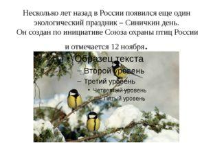 Несколько лет назад в России появился еще один экологический праздник – Синич