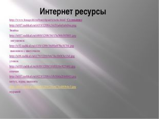 Интернет ресурсы http://www.lenagold.ru/fon/clipart/s/soln.html Солнышко http