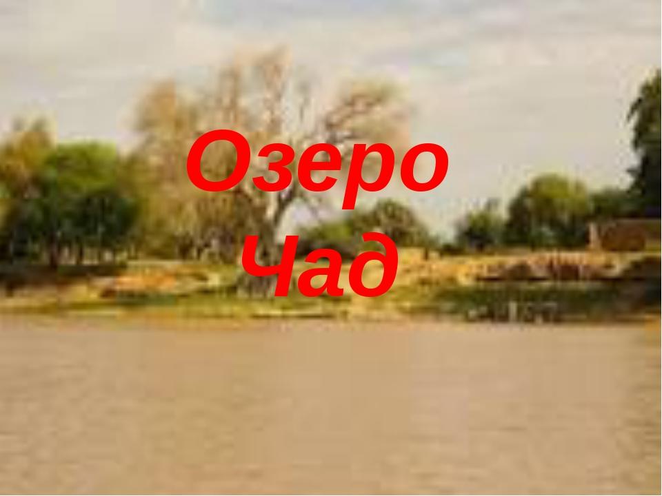 Озеро Чад Озеро Чад