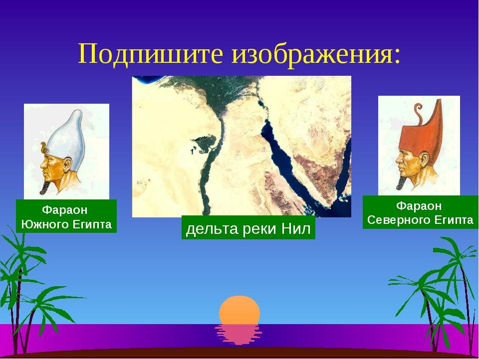 Подпишите изображения: Фараон Южного Египта Фараон Северного Египта дельта ре...